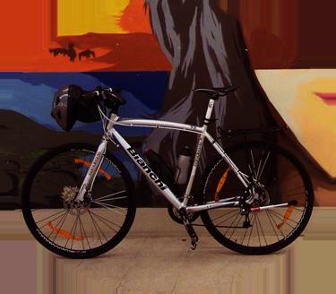 bicicamaleonte